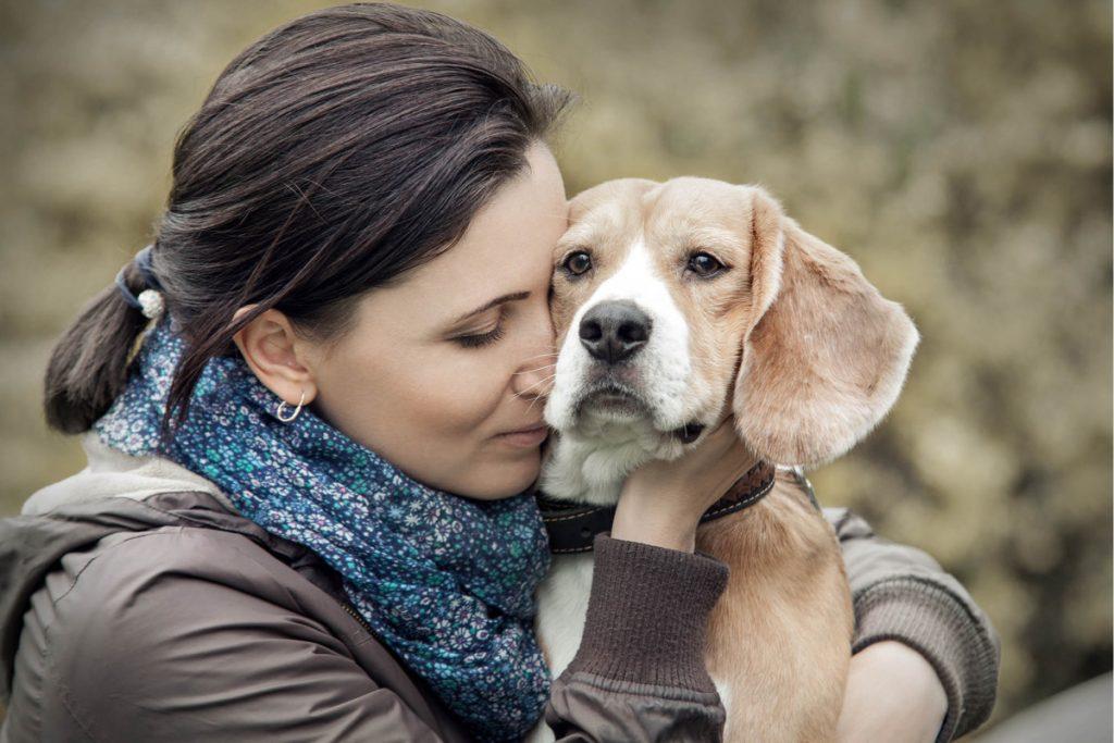 Denken Sie daran, Ihr Haustier zu lesen