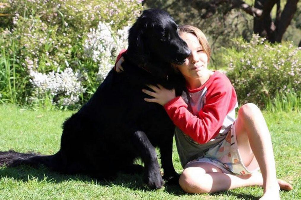 Umgang mit einem Haustier